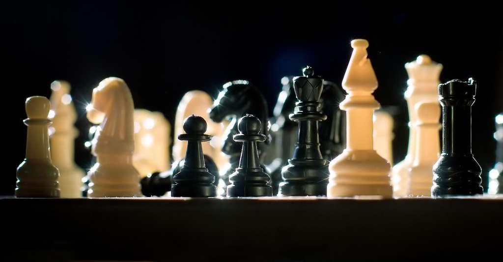 Qu'est-ce que l'échiquier de Sissa ? Ici, un jeu d'échecs. © Jeff Meyer, CC by 2.0