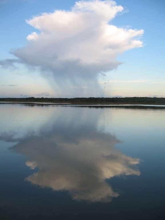 Les lacs du Yucatan ont enregistré la composition isotopique des pluies tombées à l'époque des Mayas. Les sédiments constituent un véritable enregistrement des conditions climatiques de l'époque. © Science/AAAS