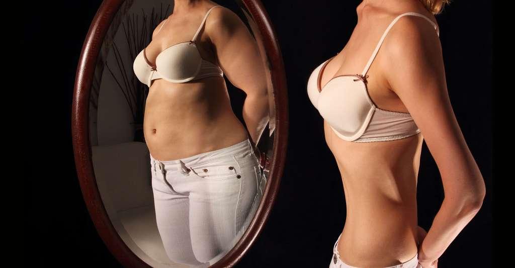 Pour comprendre l'anorexie, découvrez comment fonctionnent les mécanismes liés à la prise alimentaire. © RioPatuca,Shutterstock