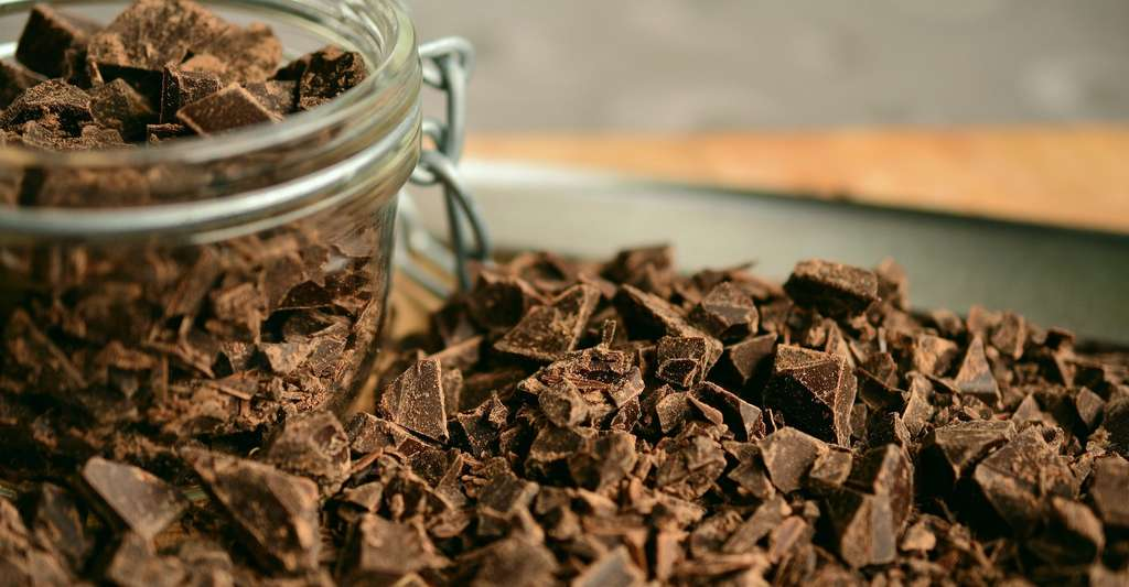 Une étude menée en 2016 par la National Oceanic and Atmospheric Administration (NOAA) américaine nous met en garde : le réchauffement climatique pourrait mettre à mal la production de cacao dès 2030. © congerdesign, Pixabay License