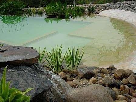 Les piscines écologiques en forme libre augmentent la consommation d'eau. © Aca SPRL