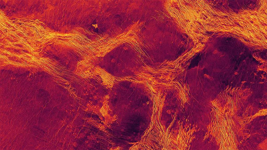 Une vue radar toujours en fausses couleurs de 1.100 km de large et montrant Lavinia Planitia, l'une des régions des plaines de Vénus où la lithosphère s'est fragmentée en blocs délimités par des ceintures de structures tectoniques (en jaune). © NC State University, Nasa/JPL imagery
