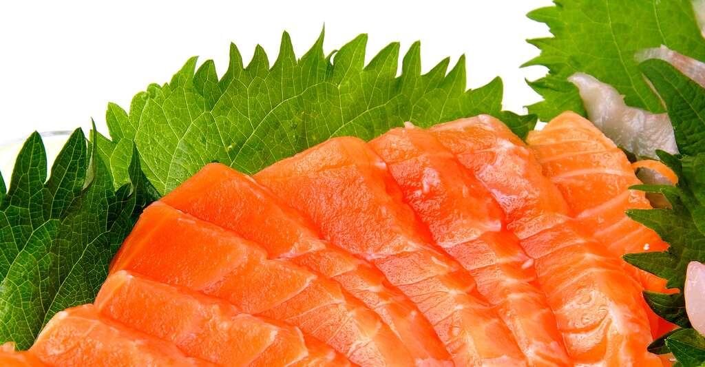 Sashimi de saumon. © Fuumi901 - Shutterstock