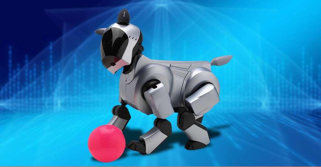 Le robot-chien Aibo est une star au Japon. © Aibo, Sony