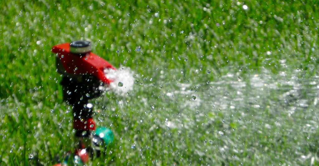 Comment faire pour l'arrosage de votre gazon ? Ici, arrosage automatique. © Free photos, Pixabay, DP