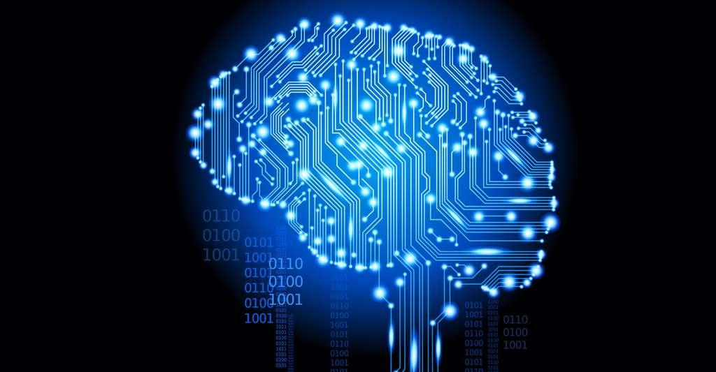 Qu'est-ce que le programme Tierra, de Thomas Ray ? Ici, un cerveau numérique. © Vladgrin, Shutterstock