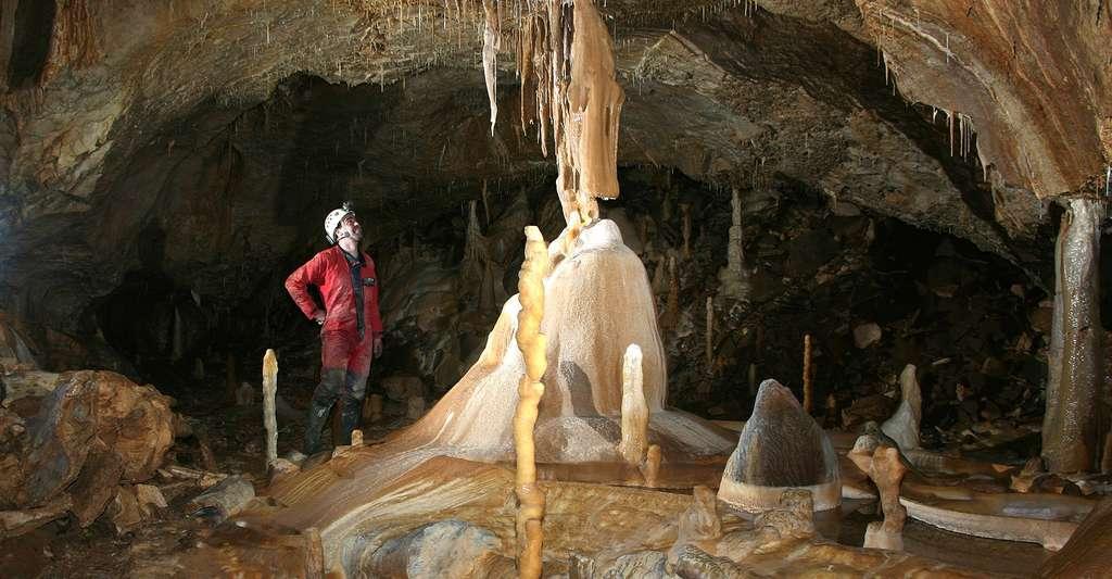 Comment se déroule la formation des grottes ? Ici, fontaine de jouvence de la salle du Dragon, dans la baume du Coudrier (Jura). © Fafatte39, Wikimedia Commons, CC by-sa 3.0
