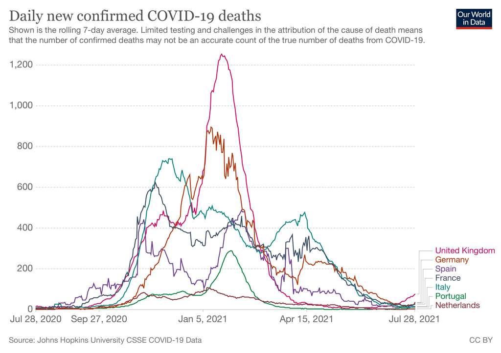Nombre de décès quotidiens entre le 28 juillet 2020 et le 28 juillet 2021. © Our World In Data