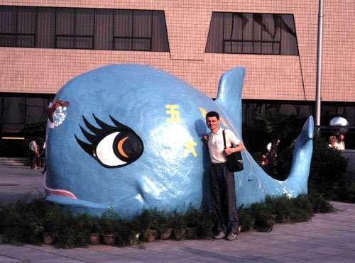Un poisson dangereux ! En Chine, on raconte qu'un énorme poisson dort sous le continent et qu'il crée des séismes en remuant ! © J.-M. Bardintzeff
