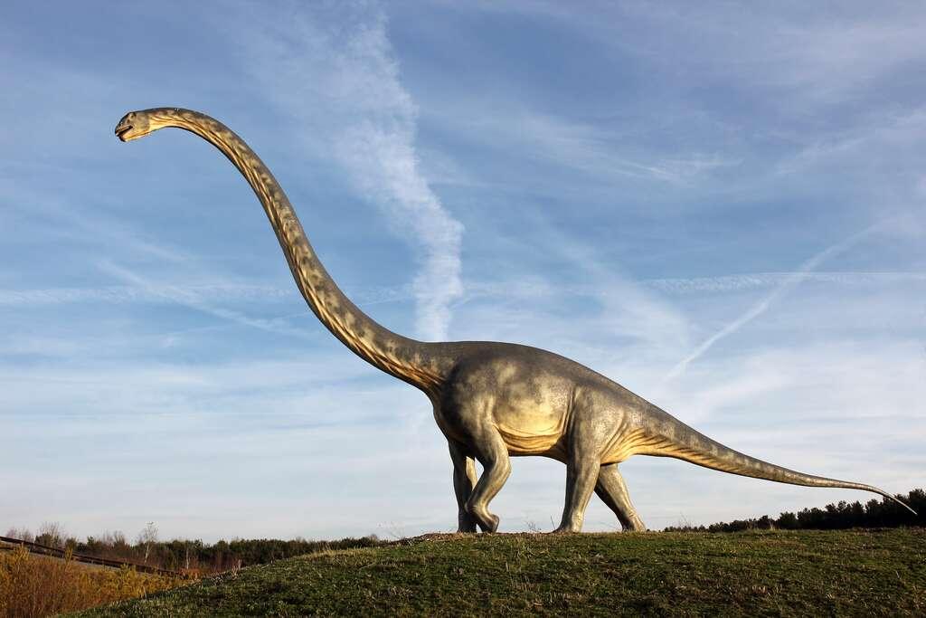 Vue d'artiste d'un sauropode. © Adobe Stock