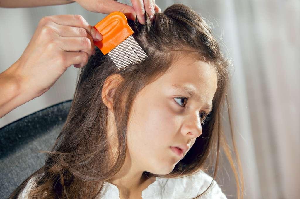 Les poux se retirent à l'aide d'un peigne fin spécial, de la racine vers la pointe du cheveu. © Mediteraneo, Adobe Stock