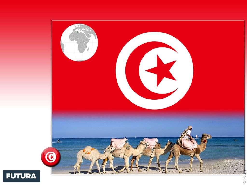 Drapeau : Tunisie