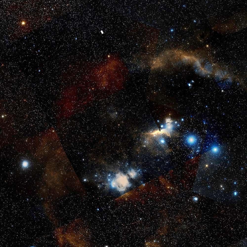 Une vue de la région d'Orion où se trouve la fameuse nébuleuse. © Digital Sky Survey