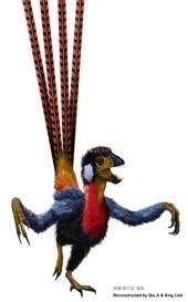 Cliquez pour agrandir. Une possible reconstruction de l'apparence d'Epidexipteryx hui. Crédit : Qui Ji & Xing Lida