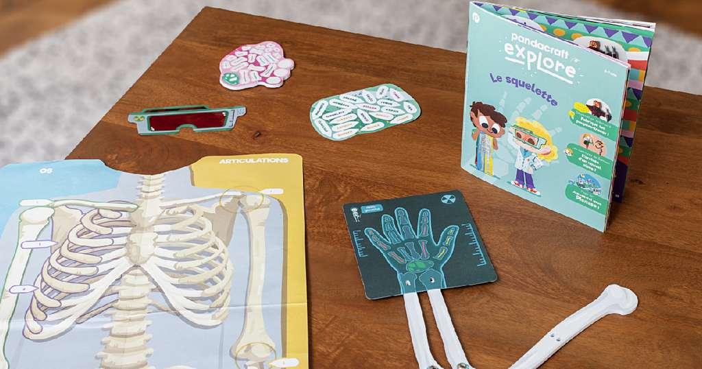 À la rentrée 2020, les enfants pourront faire l'expérience du corps humain grâce aux kits Pandacraft. © Pandacraft