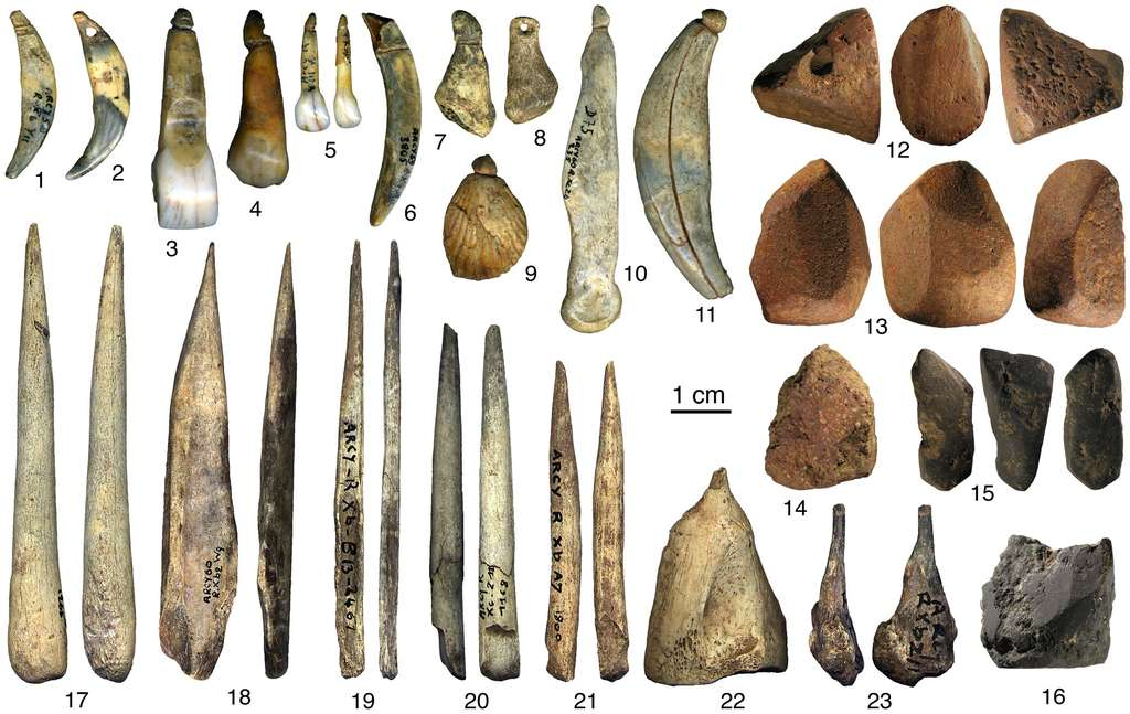Des objets découverts dans les couches châtelperroniennes de la grotte du Renne à Arcy-sur-Cure (Yonne). 1-11 : objets de parure ; 12-16 : pigments rouges et noirs avec traces d'abrasion ; 17-23 : outils en os. Image extraite de la publication parue le 29 juin 2011 dans la revue Plos One. © 1-11 Vanhaeren, 12-16 Salomon, 17-23 d'Errico/Vanhaeren