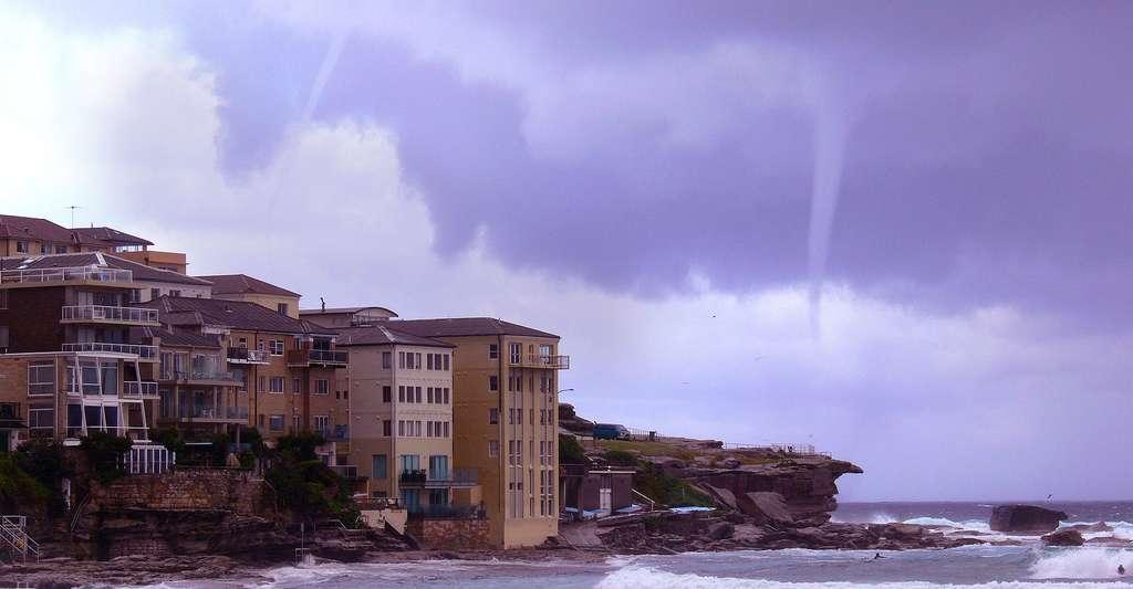 Deux tornades côte à côte sur la plage de Bondi, en Australie. © Spud Murphy, CC by-sa 2.0