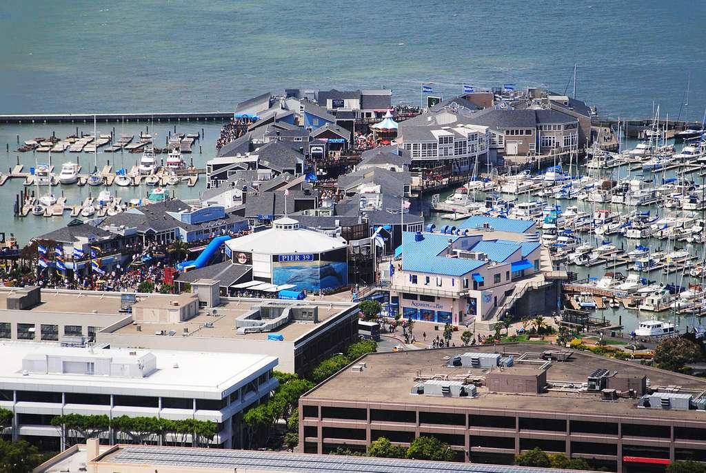 Pier 39 : on peut voir des otaries dans le port de San Francisco, où la ville a construit des plates-formes spéciales pour ces animaux, visibles en haut à gauche sur la photo. © Dimitri Talen - cc by nc 3.0