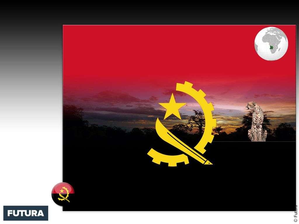 Drapeau : Angola