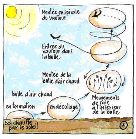 © Dessin Michel Mouze - Reproduction et utilisation interdites.