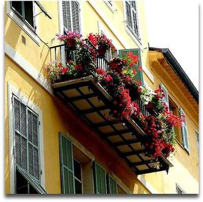 Pleine floraison sur un balcon ! © Chris, Flickr, CC by-nc-sa 2.0