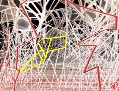 Figure 6 D Détails de dessin en 3D du MVCAS Détail de la distribution microvacuolaire. © ADF Video Production