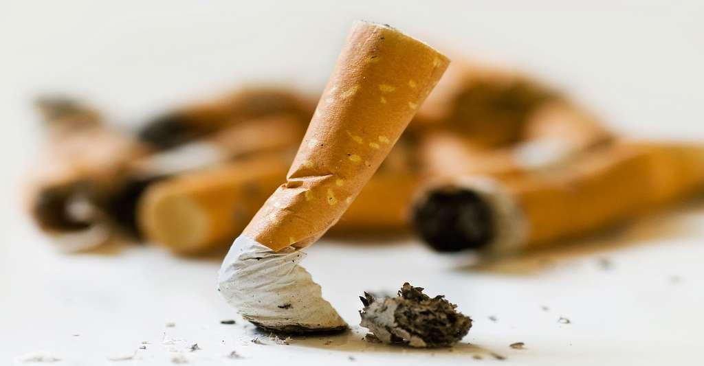 Le tabac est à proscrire pour toute forme d'incontinence liée à l'effort. © NeydtStock, Shutterstock