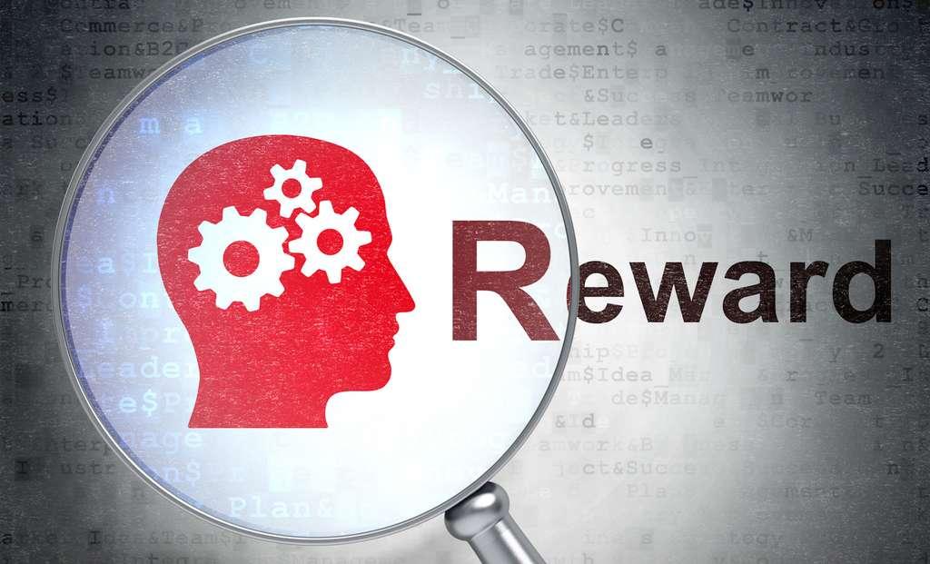 Opter pour le moindre effort coûte moins cher à notre cerveau. Cela active-t-il en plus les circuits cérébraux de la récompense (reward, en anglais)? Les chercheurs comptent étudier la question. © Maksim Kabakou, Fotolia