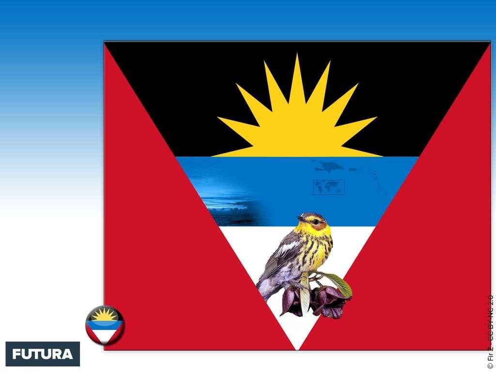 Drapeau : Antigua et Barbuda