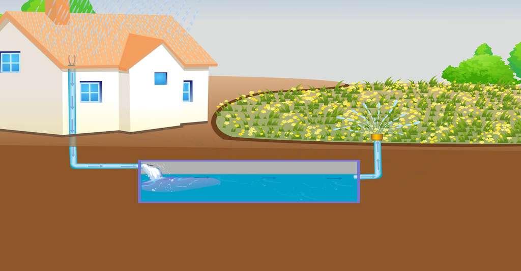 Faut-il enterrer sa cuve de récupération d'eau de pluie ? Ici, un schéma pour récupérer l'eau de pluie. © Imagedb.com, Shutterstock