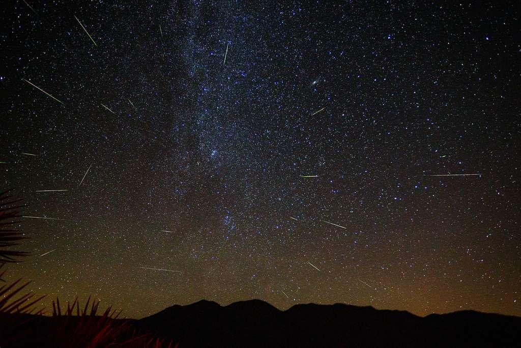 Pluie d'étoiles filantes des Perséides. © Eric Gorski, AFA