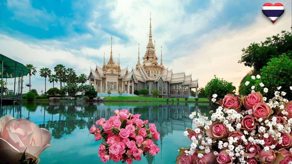 En Thaïlande, des roses à foison pour la Saint-Valentin