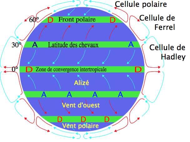 Sur cette représentation du globe terrestre, les alizés figurent en bleu clair, de part et d'autre de l'équateur. © Pinpin, Wikipedia, CC by-SA 3.0