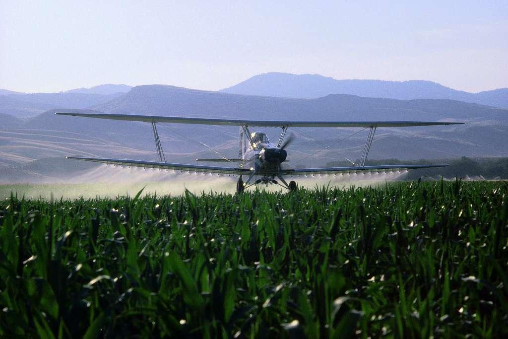 Les épandages aériens de pesticides sont interdits en France depuis 2009. Ils se poursuivent dans certaines régions grâce à des dérogations préfectorales. Cette technique augmente le risque de dispersion des pesticides. © tpmartins, Flickr, cc by nc sa 2.0
