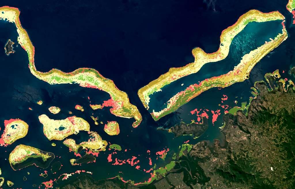 Carte benthique des récifs coralliens au large de Labasa, la plus grande ville de l'île de Vanua Levu aux Fidji. Ce type de carte modélise la présence du corail, des microalgues, de la roche, de débris, de sable et d'herbiers marins. © Planet, Allen Coral Atlas