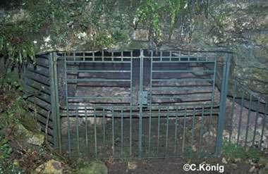 La grille devait laisser passer les animaux... © C. König, tous droits réservés