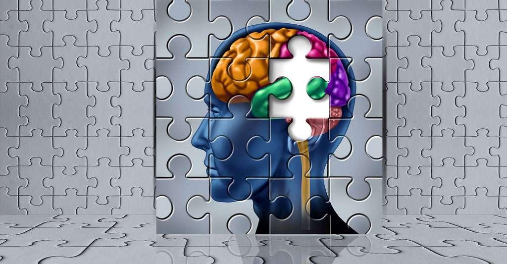 Quels programmes d'entraînement cérébral pour améliorer sa mémoire ? © Lightspring, Shutterstock