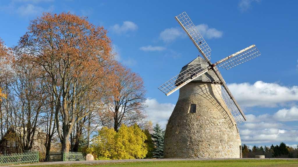 Le rare moulin à vent d'Aaspere, Estonie