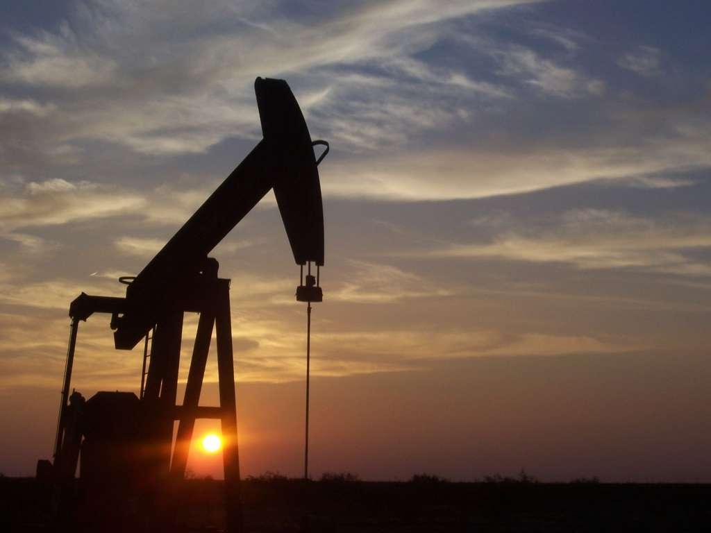L'époque de l'exploitation des hydrocarbures comme le pétrole sera peut-être bientôt révolue grâce au végétal. © Eric Kounce, Wikipédia, DP