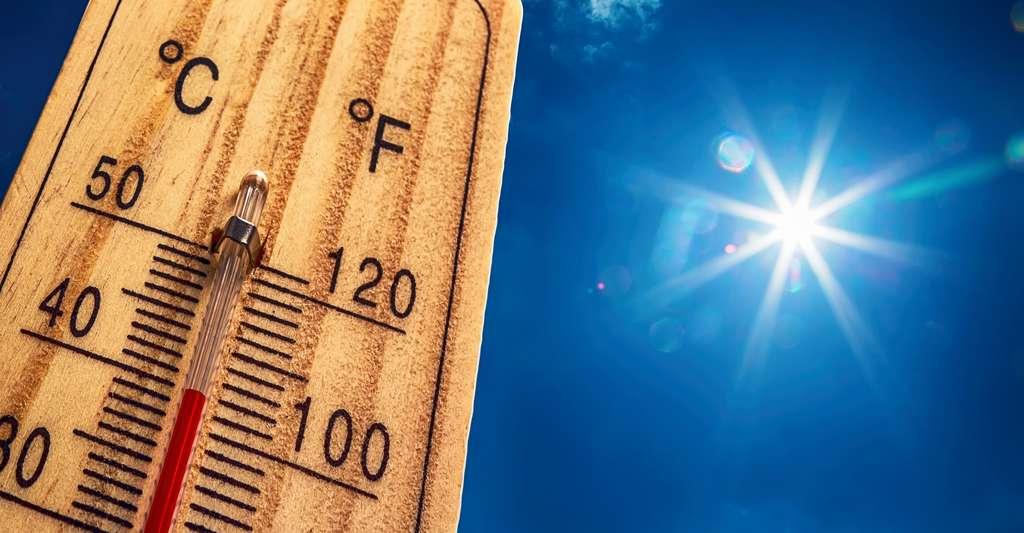 Pour mesurer la température, mieux vaut un thermomètre. © Marian Weyo, Shutterstock