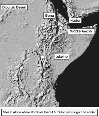La région de l'Afar et les sites où l'on a trouvé des hominidés vieux de plusieurs millions d'années. Crédit : Stone Age Institute