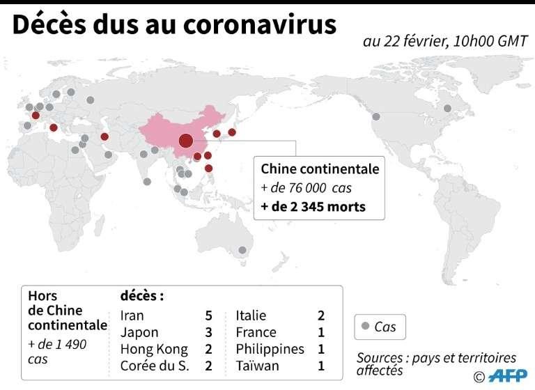 Décès dus au coronavirus. © Laurence Chu, AFP