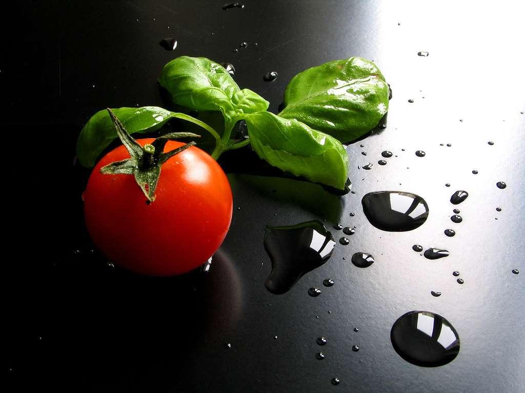 Basilic et tomate, un heureux mariage. © Giuseppe Bognanni, CC by-nc 2.0