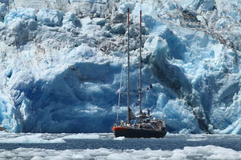 Tara au pied du Seno Iceberg