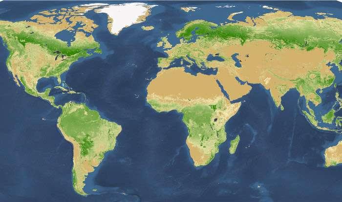 Les forêts mondiales sont très bien repérées par satellites mais le comptage individuel des arbres est en revanche très difficile. Il faut confronter ces données venues de l'espace avec des observations de terrain. © Université de Yale