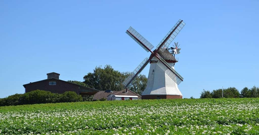 Le Lot-et-Garonne possède 535 moulins ! © Malte Jörn Krafft, Wikimedia commons, CC by-sa 4.0