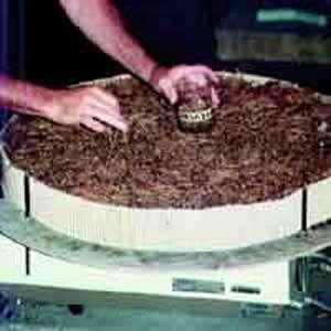 Prélèvement d'un échantillon de litière d'aiguilles de pin pour en mesurer la teneur en eau. photo : Cemagref - C.Cabaret ref : iM5402