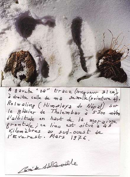 René de Milleville était un spécialiste de l'Himalaya. Il a pris cette photographie en 1976. Son empreinte est à droite, mais à qui appartient donc celle de gauche ? Au yéti ? © Asterix99, Wikimedia common, CC by-sa 3.0