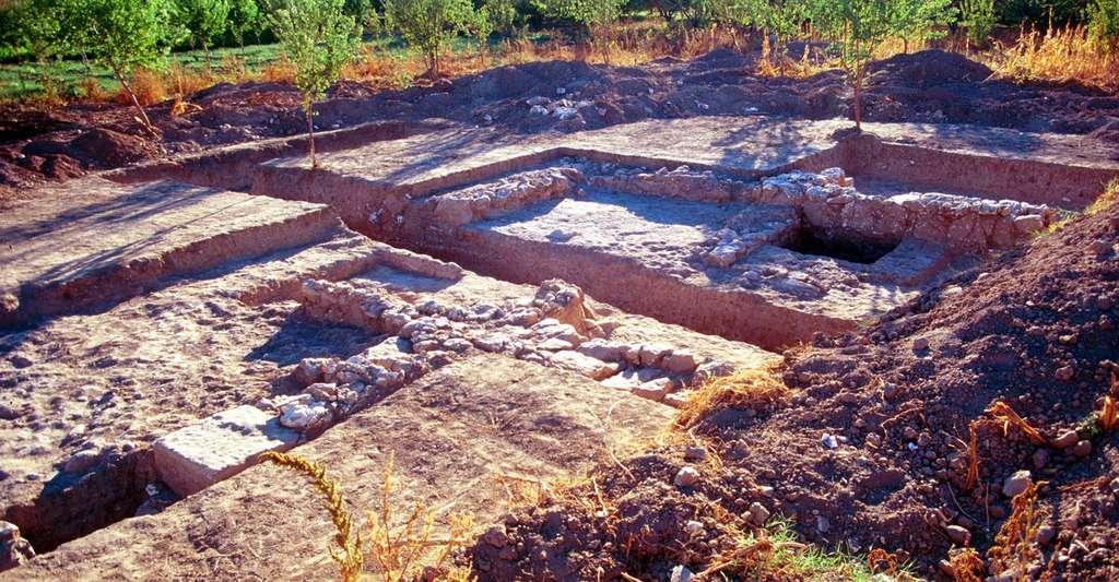 Fouilles de l'habitat à Apamée de l'Euphrate, Justine Gaborit (mission Zeugma). © Catherine Reynal, tous droits réservés