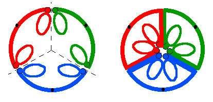 Les deux types principaux de placentation. L'exemple choisi est un ovaire à trois carpelles soudés colorés en rouge, bleu et vert. © B.Media, DR